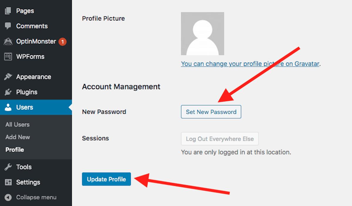 WordPress change user password